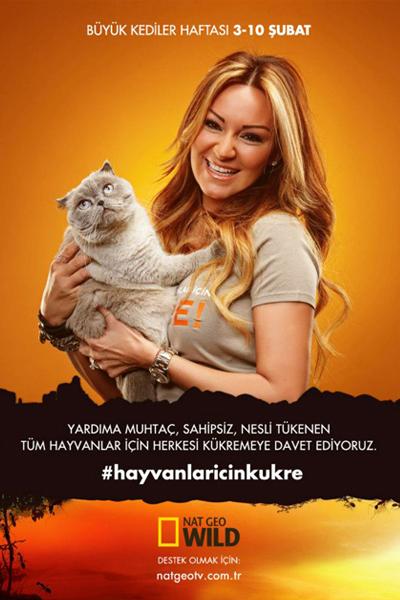 Büyük Kediler Haftası