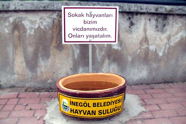 Hayvan Suluğu, İnegöl Belediyesi
