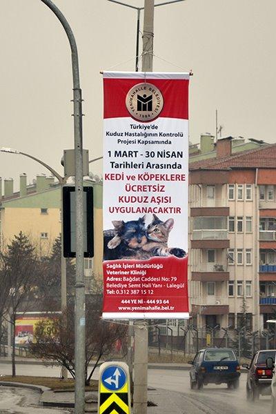 Ücretsiz Kuduz Aşısı, Ankara