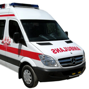 Van&#8217;da Hayvanlar in Ambulans