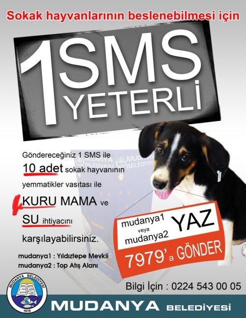 Yem-Matik