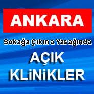 11-12 Nisan Ankara'da açık veteriner klinikleri