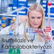 Brusellozis ve Kampilobakteriyozis Enfeksiyonları